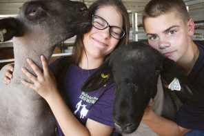 Fair time: Smith kids involved in 4-H projects