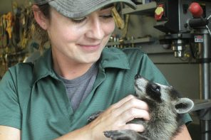 Taking care of the animals: Hoffman starts naturalist job in May at county parks