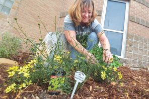 Students enjoy Northridge fairy garden, island gardens